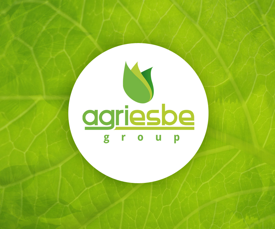 http://www.agriesbegroup.com